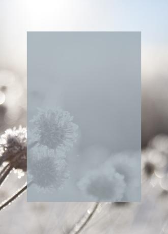 invierno-bellenatur